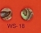 WS 18 Inlay Abalone Dot 8mm Dia. (Bag of 50 Pcs.)